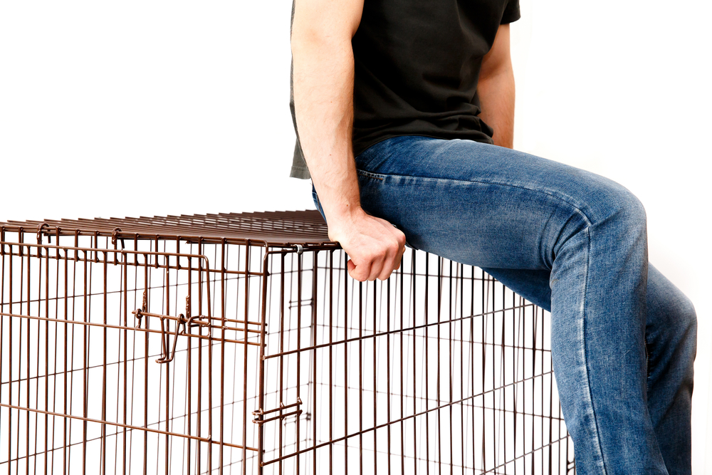 This image shows an image of a man sitting on top of a dog kennel.